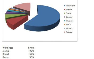 Gebruikte CMS systemen 2013